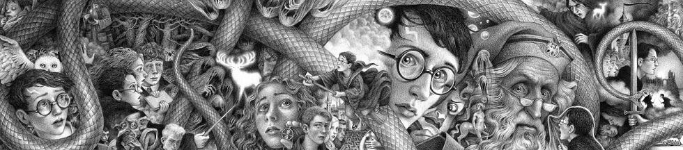 Vydanie Harryho Pottera k 20. výročiu vydania v USA, Autor: Brian Selznick